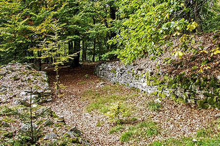 Celtic walled area on the Ringskopf (650m) near Allenbach («Idarwald» Forest)