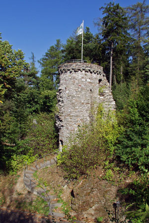 Dhronecken Castle in the valley of the «Little Dhron» river («Hochwald» Forest)