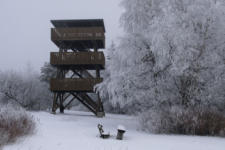 Observation tower on the Erbeskopf mountain (818 m) in winter («Hochwald» Forest)